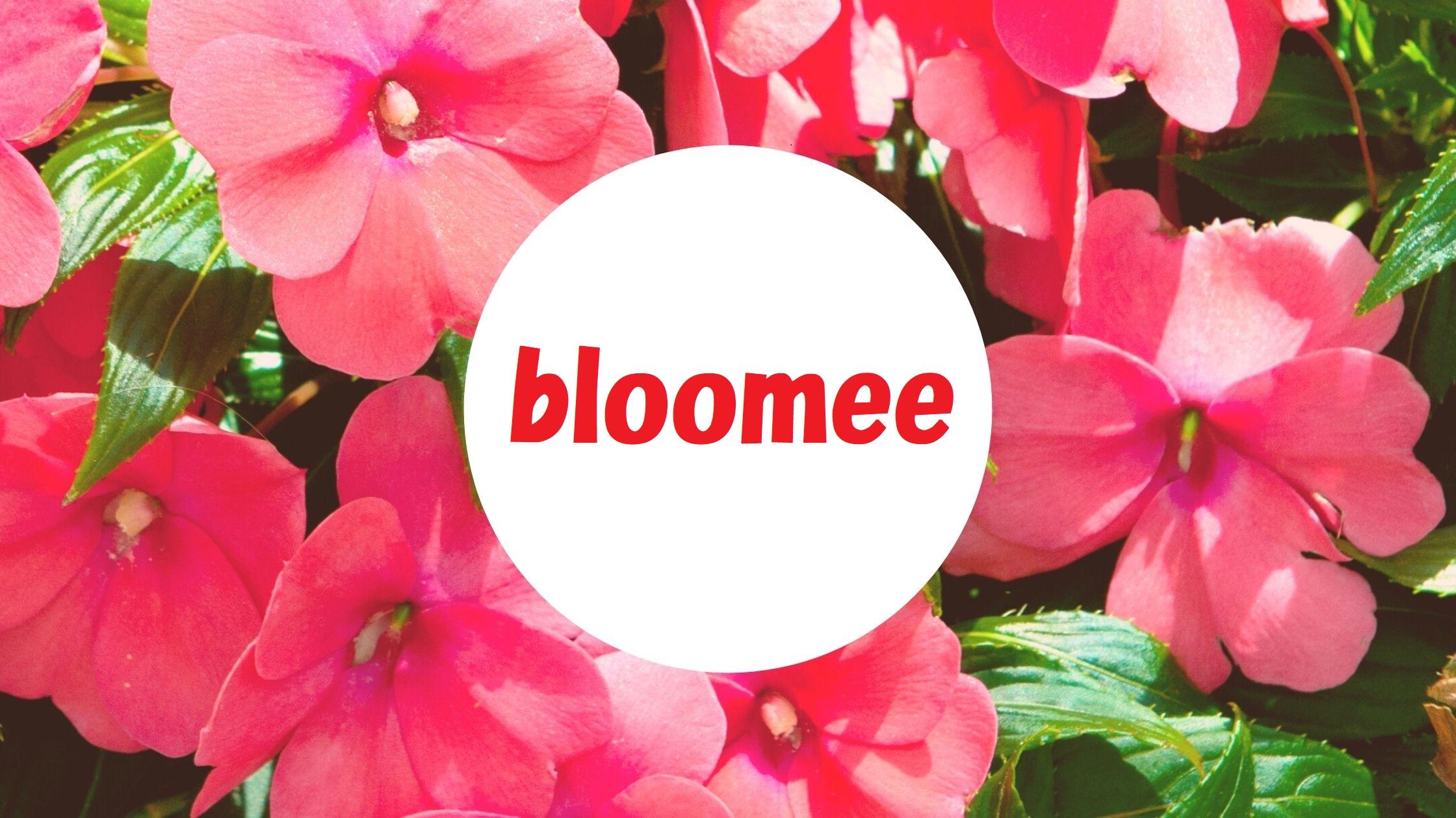 花のサブスク「bloomee-ブルーミー」