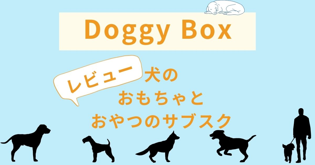 doggy box-review